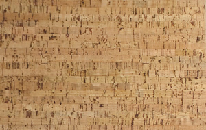 silver birch forna cork flooring
